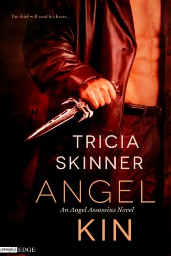 Angel Kin cover