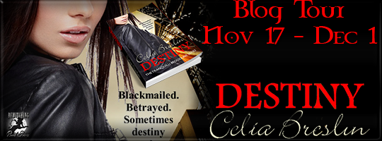 Destiny by Celia Breslin Bewitching Book Tour November 17 thru December 1