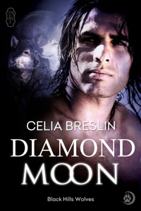 Diamond Moon by Celia Breslin book cover