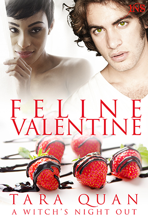 Tara Quan's Feline Valentine Book cover