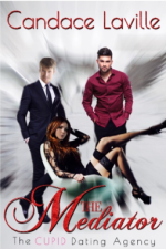 The Mediator by Candace Laville book cover