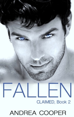 Fallen by Andrea R. Cooper book cover image