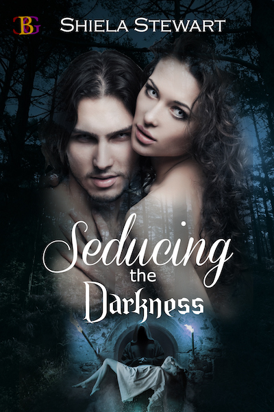 Seducing the Darkness by Shiela Stewart new book cover